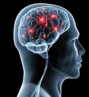 wpid-wpid-wpid-Parkinson_220110_q91CIc32.jpg