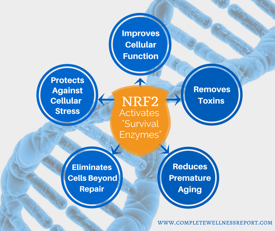 What is NRF2